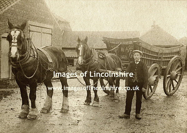 Robert_Sergeant_Fulnetby_Hall_Horses_and_Cart_c1907